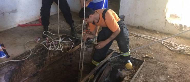 Rescataron un perro que había caído en un pozo de catorce metros